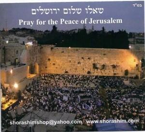 Pray for the Peace of Jerusalem