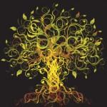 Olive Tree 250 x 300