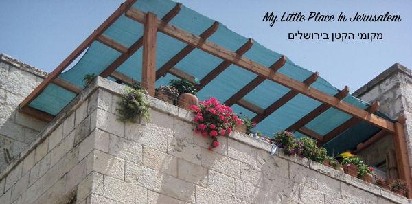 My Little Place In Jerusalem 5