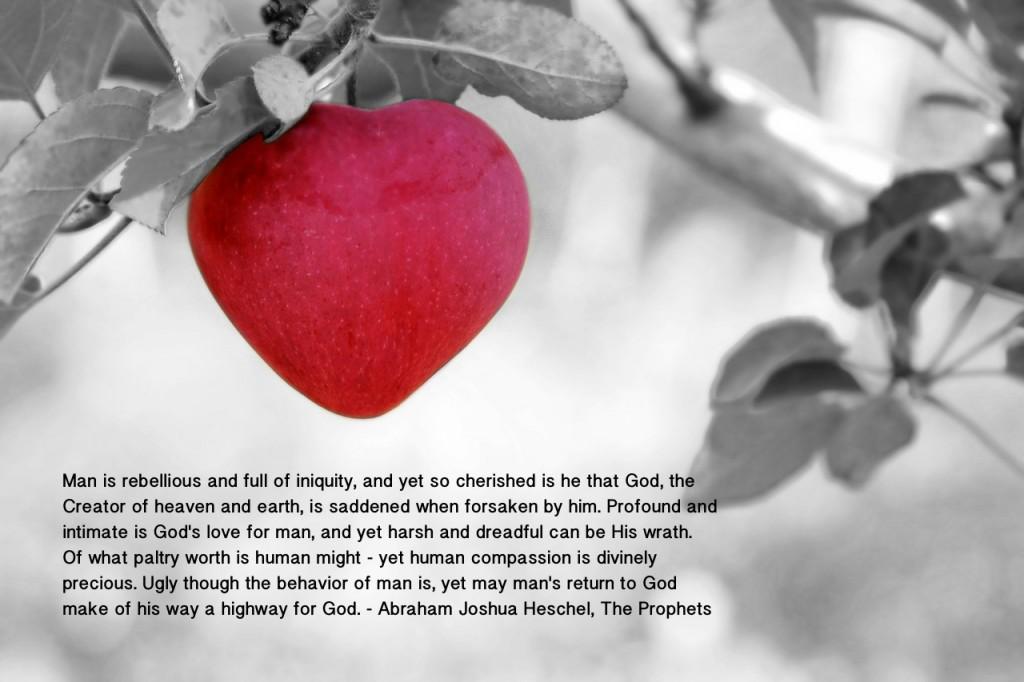prophets quote