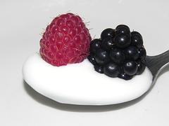 raspberry-583076__180
