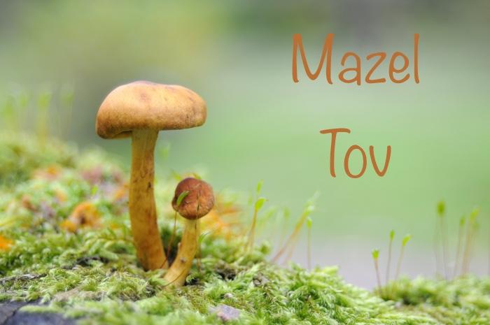 mazel-tov-sept-2016
