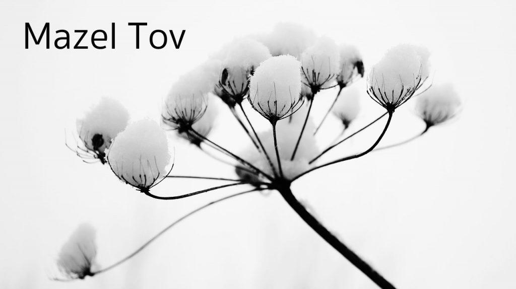 mazel-tov-november
